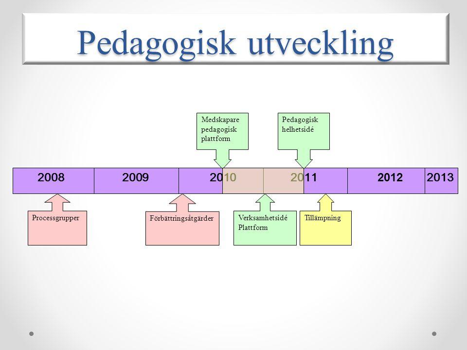 2008 2009 2010 2011 2012 2013 Processgrupper Förbättringsåtgärder Pedagogisk helhetsidé Medskapare pedagogisk plattform Pedagogisk utveckling Tillämpn