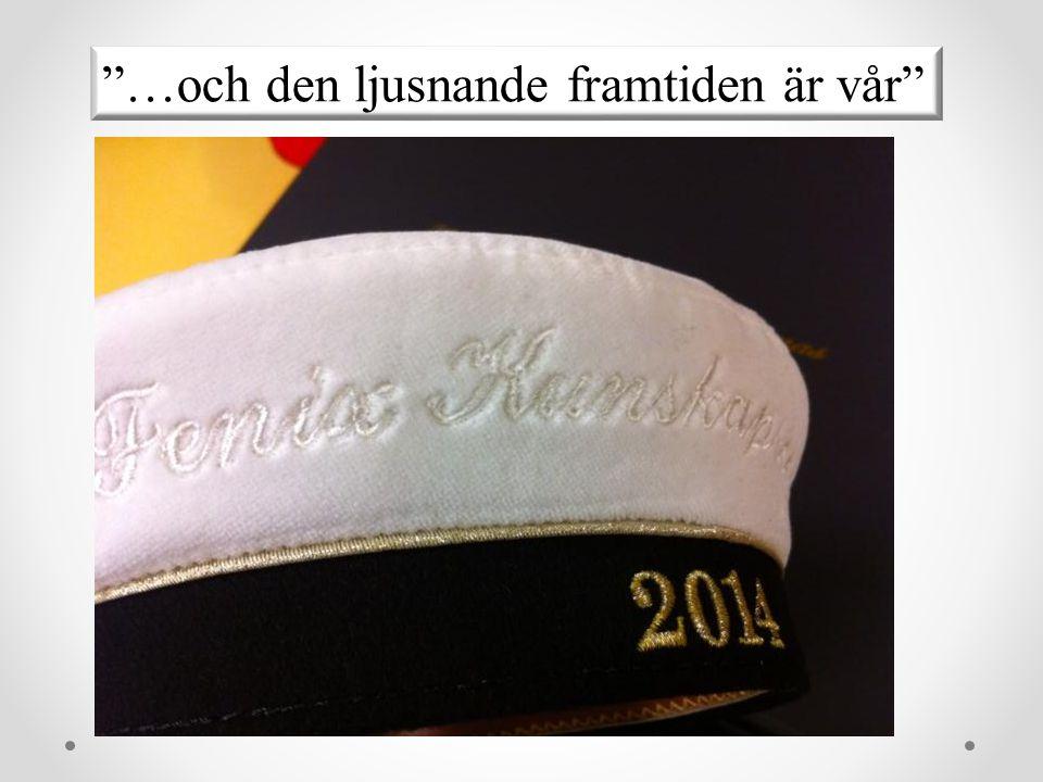 FREJA – Uppsala tekniska fysikers tjejfrening Siddy Johannsdotter Tel 070 471 79 94 siddy.johannsdotter@gmail.com freja.utft@gmail.com