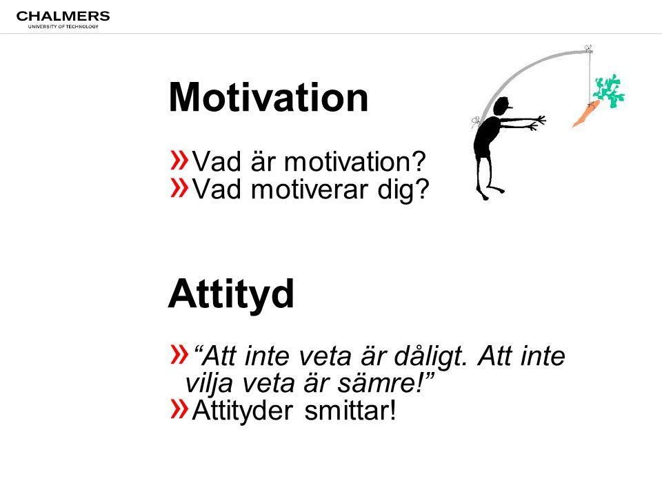 Motivation » Vad är motivation. » Vad motiverar dig.