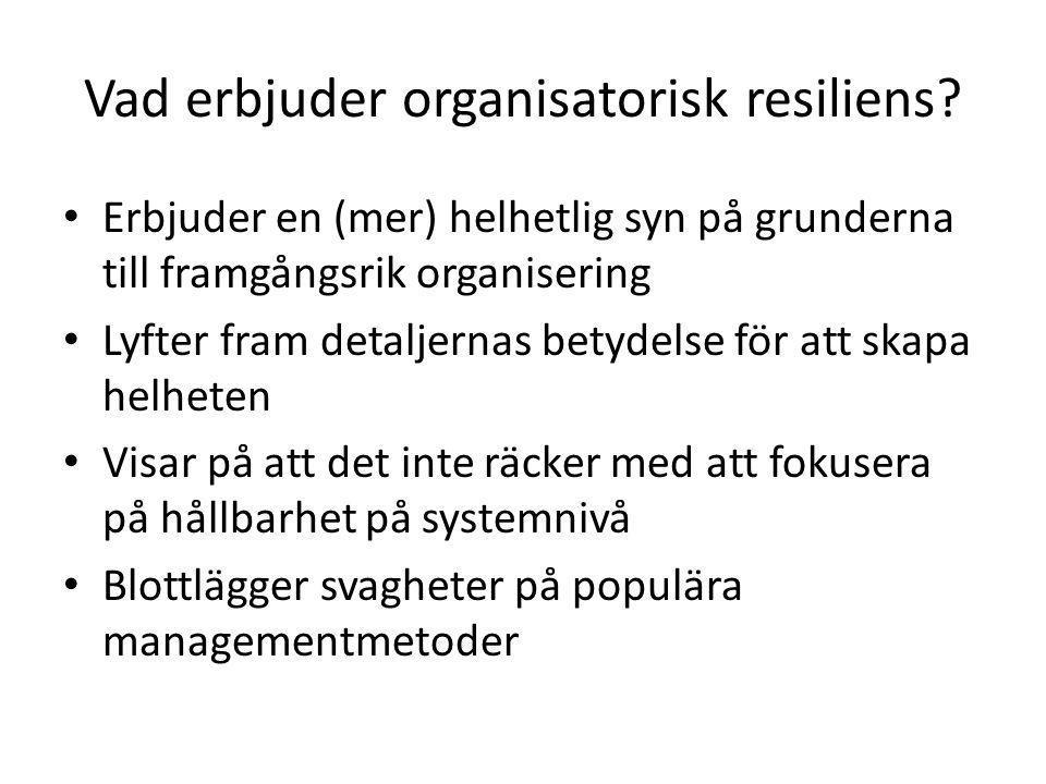 Vad erbjuder organisatorisk resiliens.