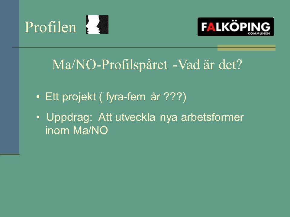 Ma/NO-Profilspåret -Vad är det? Ett projekt ( fyra-fem år ???) Uppdrag: Att utveckla nya arbetsformer inom Ma/NO