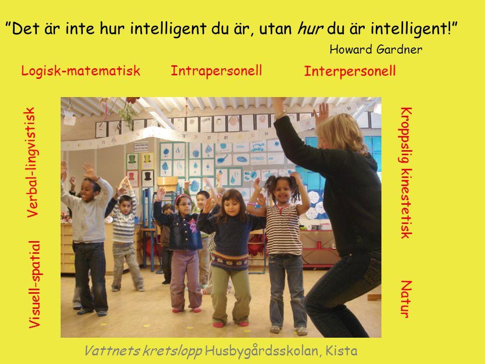 """""""Det är inte hur intelligent du är, utan hur du är intelligent!"""" Howard Gardner Vattnets kretslopp Husbygårdsskolan, Kista Logisk-matematiskIntraperso"""