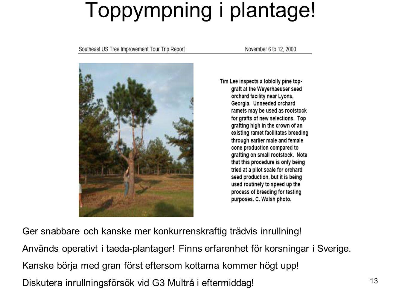 13 Toppympning i plantage! Ger snabbare och kanske mer konkurrenskraftig trädvis inrullning! Används operativt i taeda-plantager! Finns erfarenhet för
