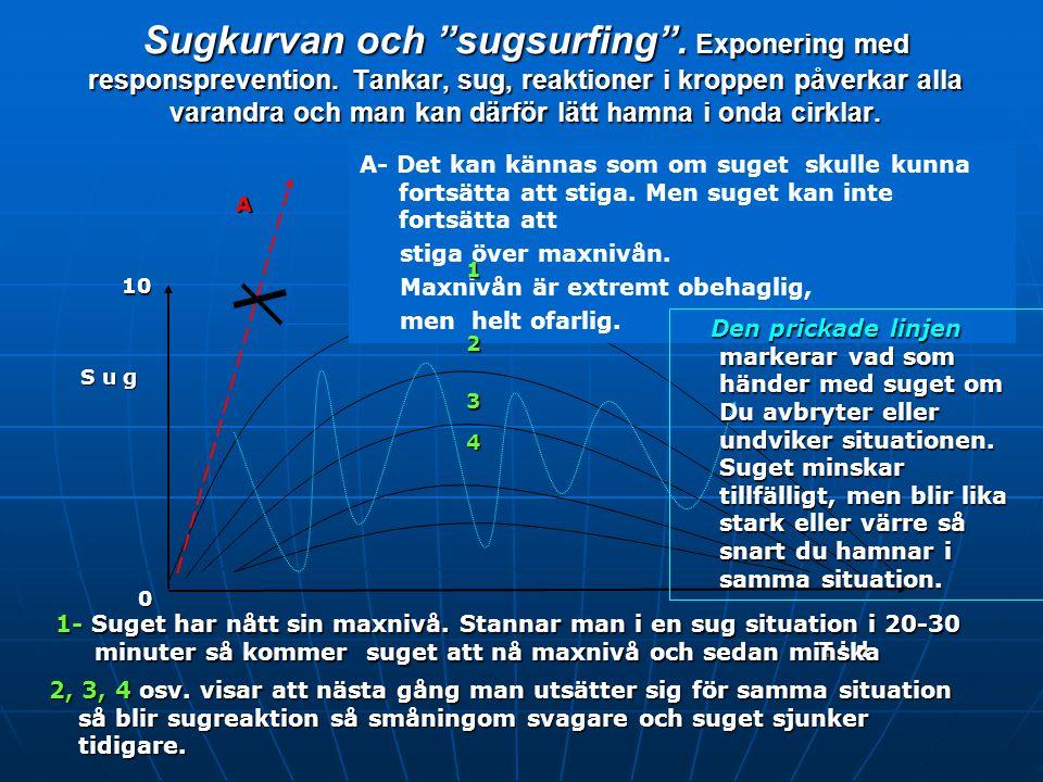 """Sugkurvan och """"sugsurfing"""" Exponering med responsprevention (Klienter) 1 2 3 4 A T i d Styrka Styrka 0 10 10 Myter: intensiteten och hur lång tid pågå"""