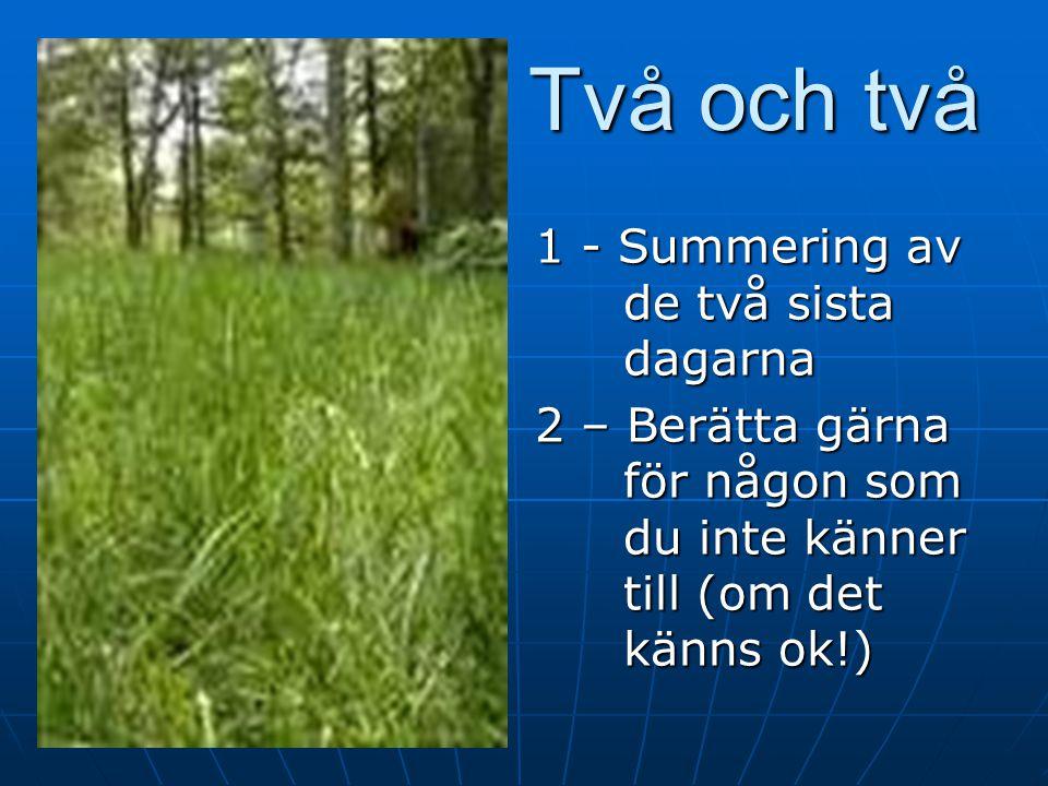 Agenda kursdag 3 Kollegor Summering Summering Hemuppgifterna Hemuppgifterna Lektion 4 steg för steg: Varför skall man lära sig problemlösning? Demo+öv