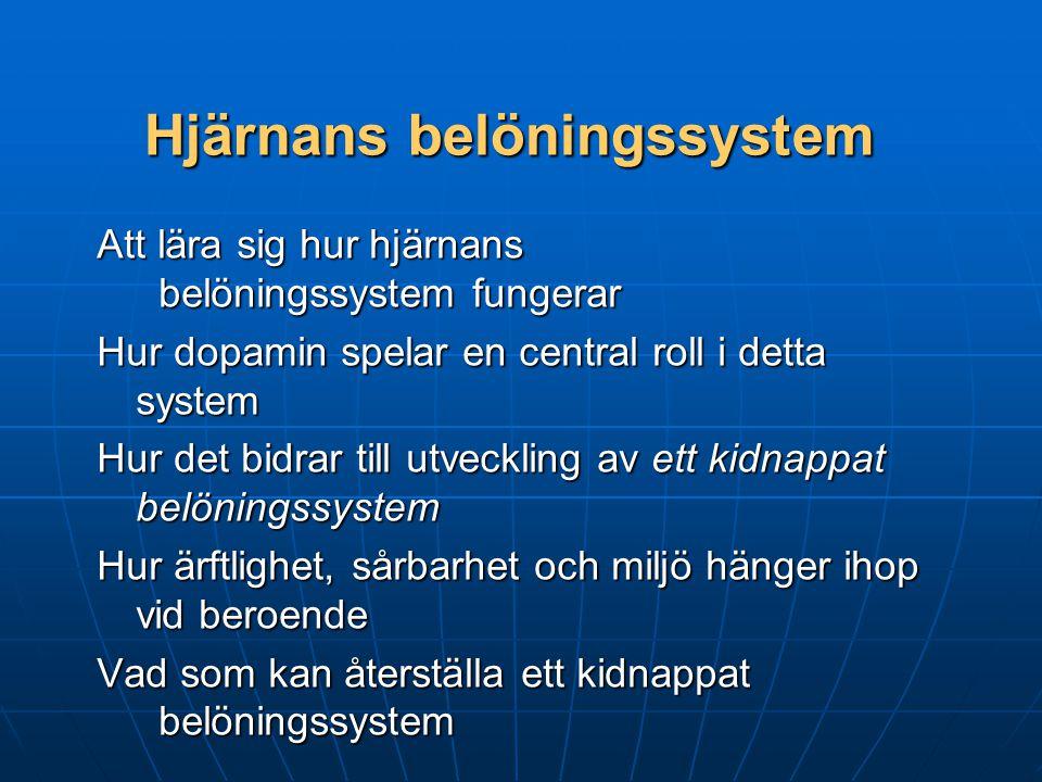 Hjärnans belöningssystem Den biologiska gemensamma faktor vid beroende Den biologiska gemensamma faktor vid beroende