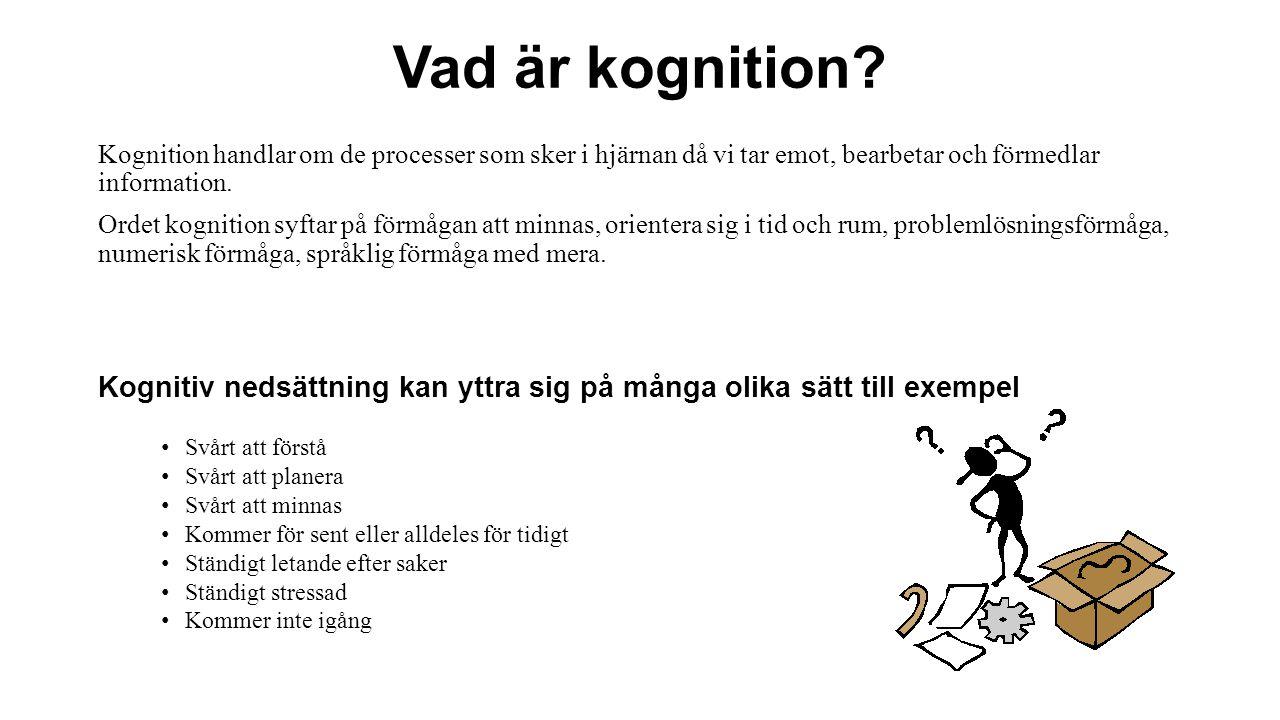 Vad är kognition.