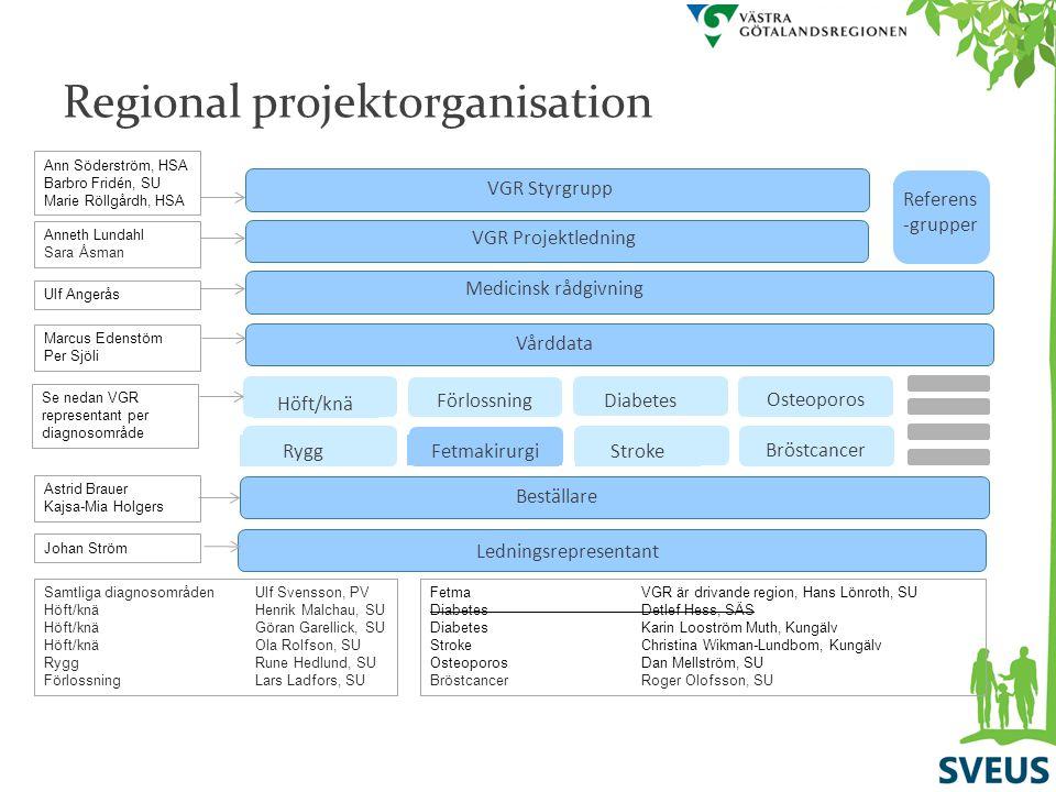 VGR Styrgrupp VGR Projektledning Beställare Vårddata Medicinsk rådgivning Ledningsrepresentant Referens -grupper Förlossning Stroke Diabetes Rygg Höft