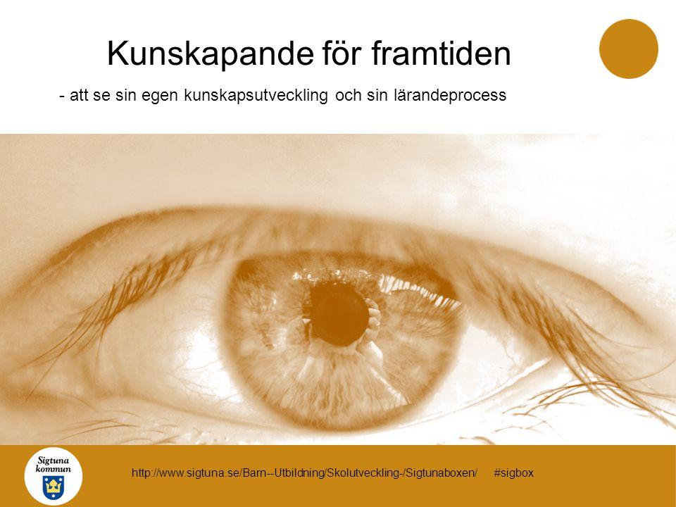 Kunskapande för framtiden - att se sin egen kunskapsutveckling och sin lärandeprocess http://www.sigtuna.se/Barn--Utbildning/Skolutveckling-/Sigtunabo
