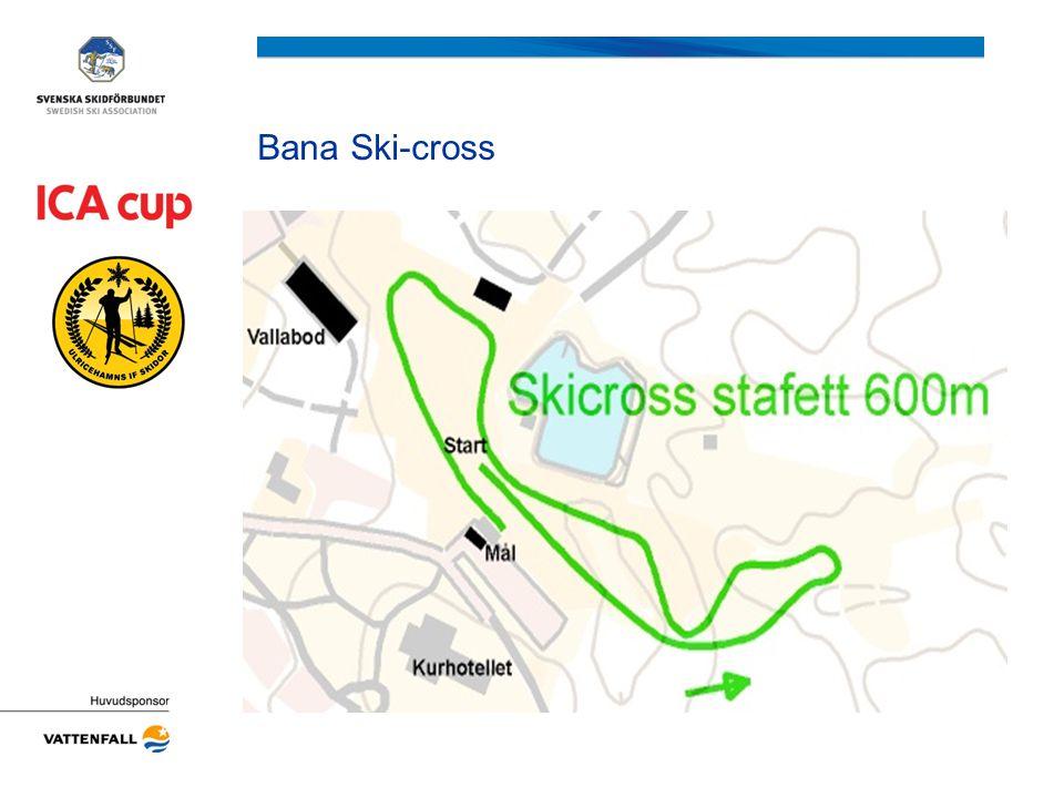 Bana Ski-cross