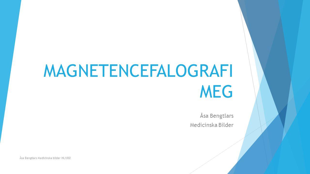 MAGNETENCEFALOGRAFI MEG Åsa Bengtlars Medicinska Bilder Åsa Bengtlars Medicinska bilder HL1002