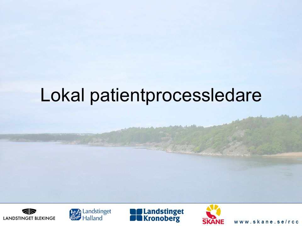 w w w. s k a n e. s e / r c c Lokal patientprocessledare