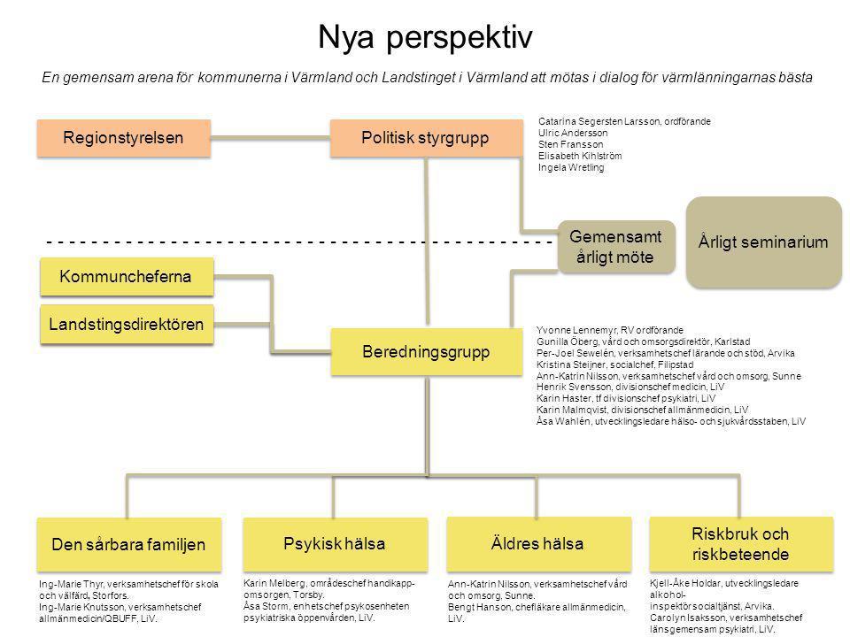 Politisk styrgrupp Beredningsgrupp Den sårbara familjen Psykisk hälsa Kommuncheferna Landstingsdirektören Regionstyrelsen Riskbruk och riskbeteende Äl