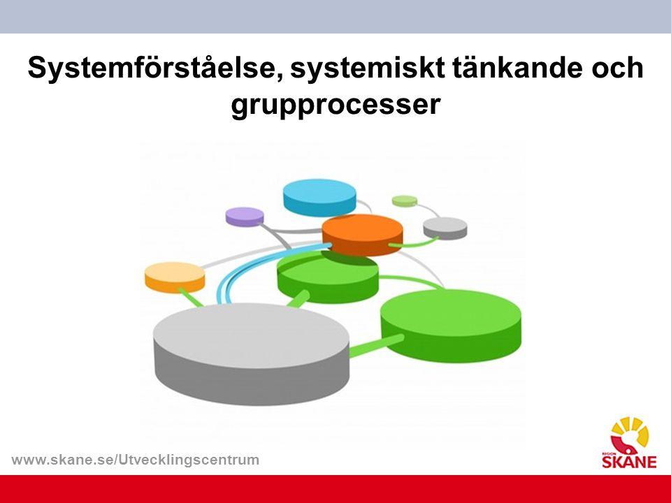www.skane.se/Utvecklingscentrum Systemförståelse, systemiskt tänkande och grupprocesser