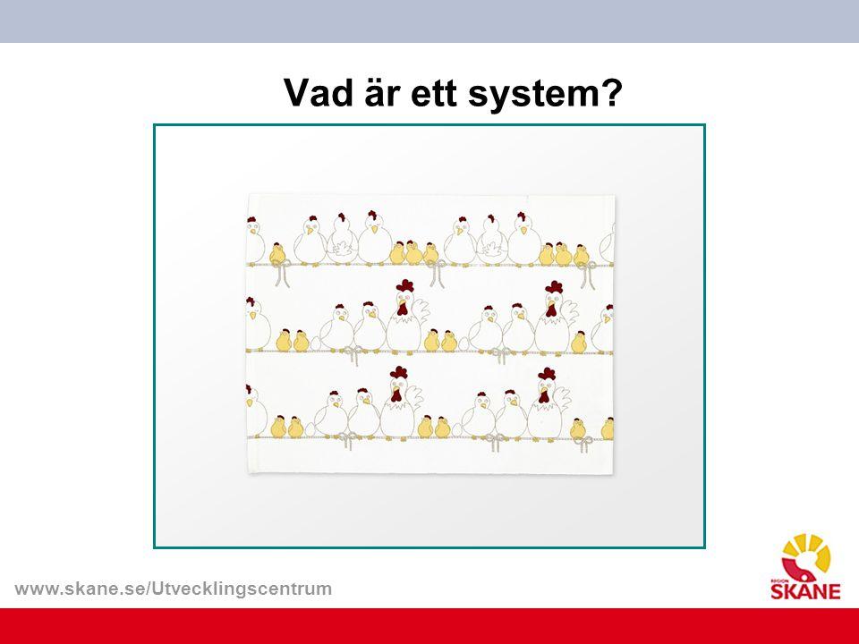 www.skane.se/Utvecklingscentrum Vad är ett system?