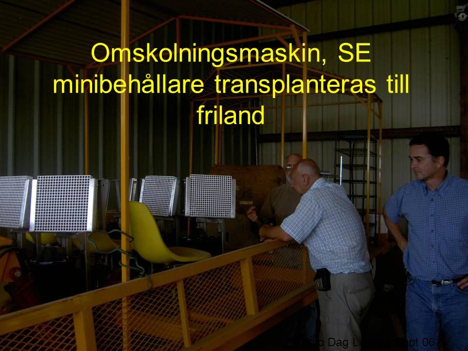 Omskolningsmaskin, SE minibehållare transplanteras till friland Photo Dag Lingren Sept 06