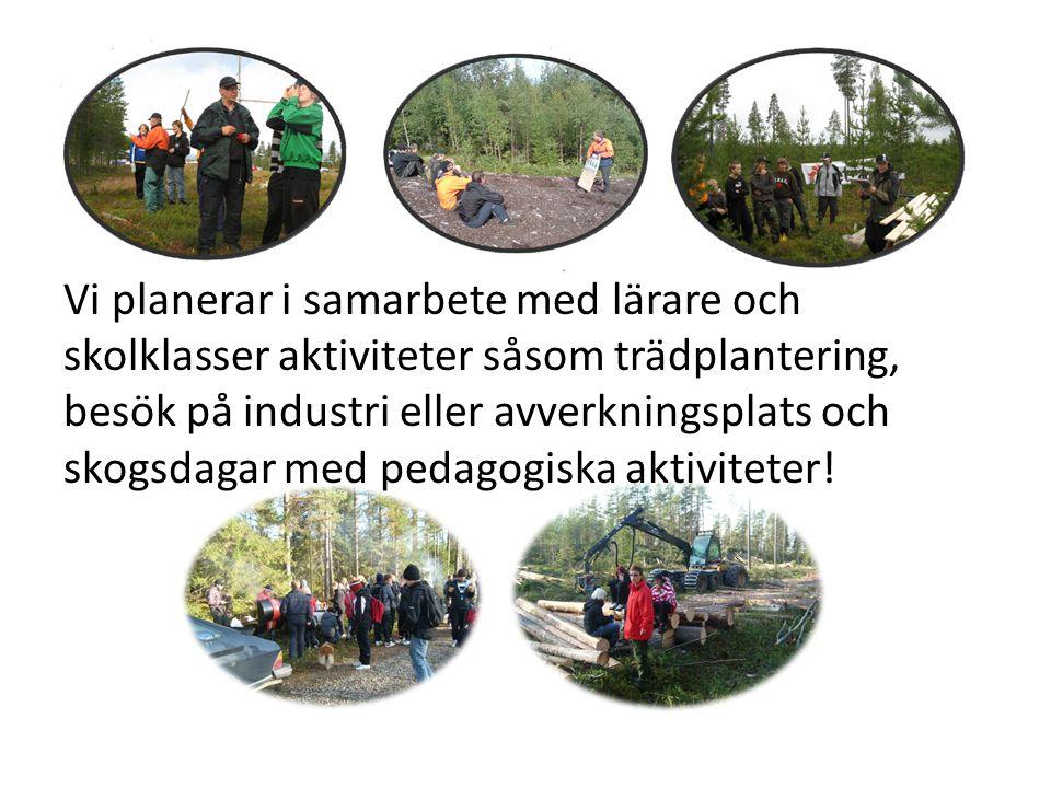 Vi planerar i samarbete med lärare och skolklasser aktiviteter såsom trädplantering, besök på industri eller avverkningsplats och skogsdagar med pedag