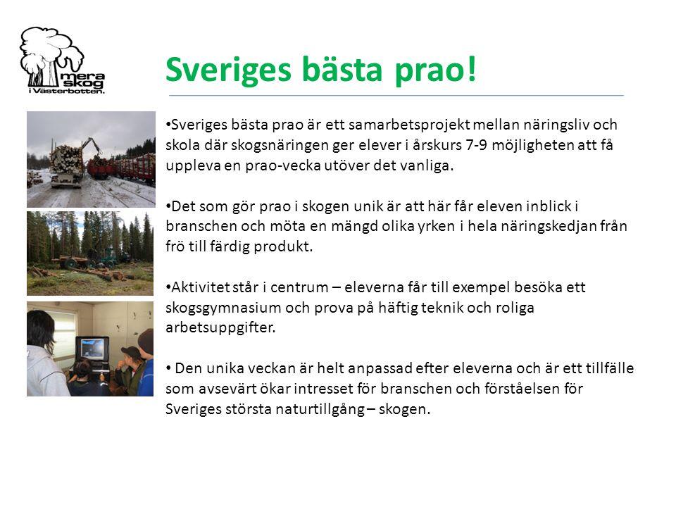 Sveriges bästa prao! Sveriges bästa prao är ett samarbetsprojekt mellan näringsliv och skola där skogsnäringen ger elever i årskurs 7-9 möjligheten at