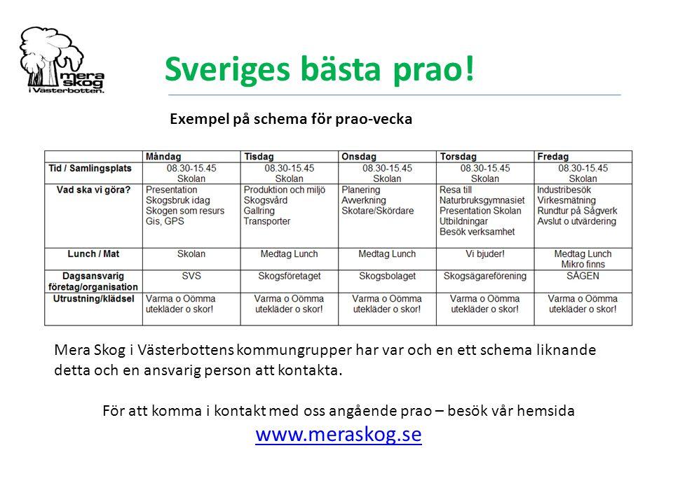 Sveriges bästa prao! Exempel på schema för prao-vecka Mera Skog i Västerbottens kommungrupper har var och en ett schema liknande detta och en ansvarig