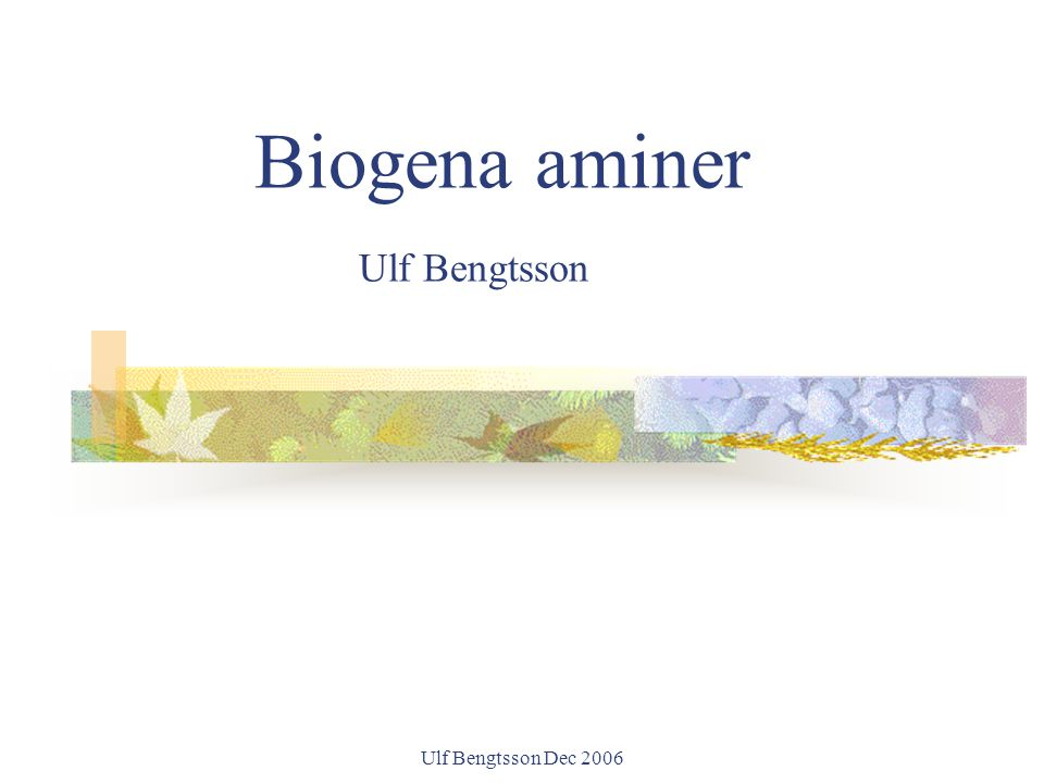 Ulf Bengtsson Dec 2006 Histamine-Intolerance (HIT) In October 2004 the second edition of the book was launched, containing a chapter of state of the art diagnostic.