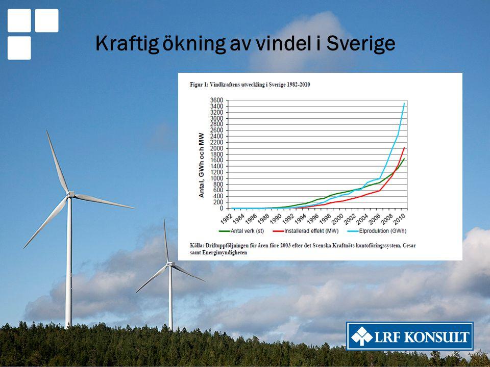 Kraftig ökning av vindel i Sverige