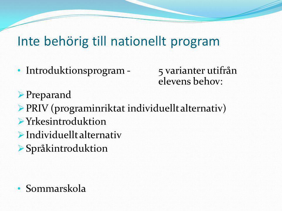 Inte behörig till nationellt program Introduktionsprogram -5 varianter utifrån elevens behov:  Preparand  PRIV (programinriktat individuellt alterna