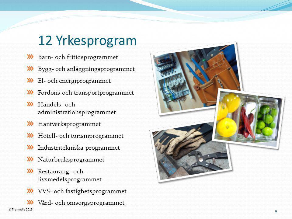 12 Yrkesprogram 5 Barn- och fritidsprogrammet Bygg- och anläggningsprogrammet El- och energiprogrammet Fordons och transportprogrammet Handels- och a