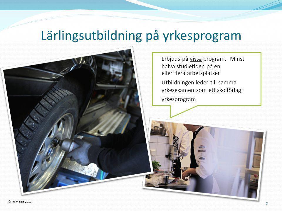 Lärlingsutbildning på yrkesprogram 7 Erbjuds på vissa program. Minst halva studietiden på en eller flera arbetsplatser Utbildningen leder till samma y
