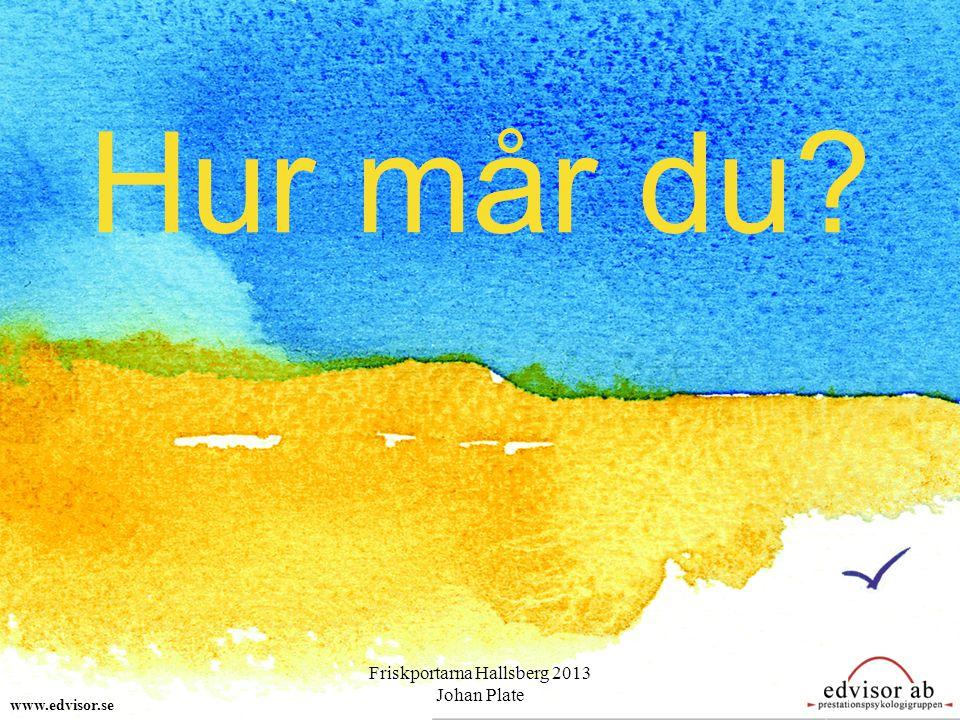 Hur mår du? www.edvisor.se Friskportarna Hallsberg 2013 Johan Plate