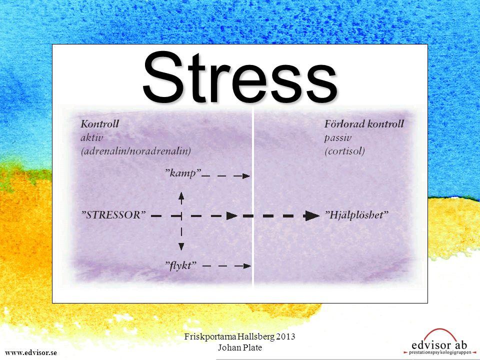 www.edvisor.se Stress Friskportarna Hallsberg 2013 Johan Plate