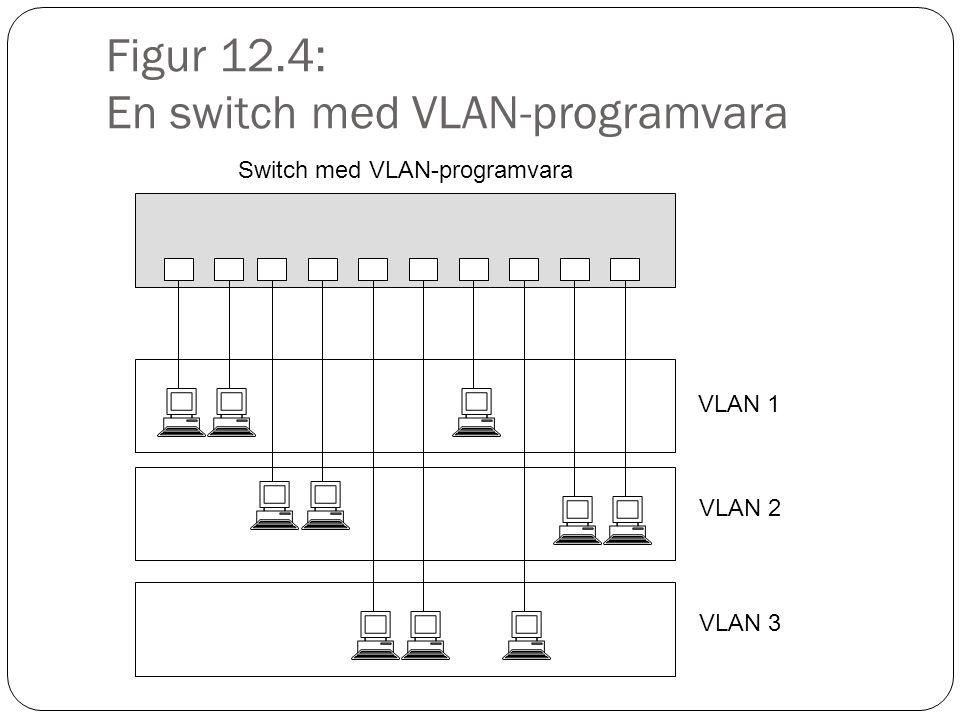 Figur 12.4: En switch med VLAN-programvara Switch med VLAN-programvara VLAN 1 VLAN 2 VLAN 3