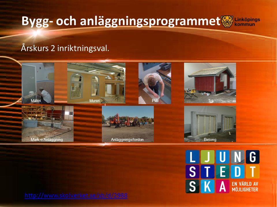 Bygg- och anläggningsprogrammet Årskurs 2 inriktningsval. http://www.skolverket.se/sb/d/2988 MåleriMureriPlåt Mark o AnläggningAnläggningsfordon Trä B