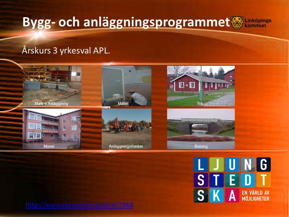 Bygg- och anläggningsprogrammet Årskurs 3 yrkesval APL. http://www.skolverket.se/sb/d/2988 Måleri MureriBetongAnläggningsfordon Mark o AnläggningTrä