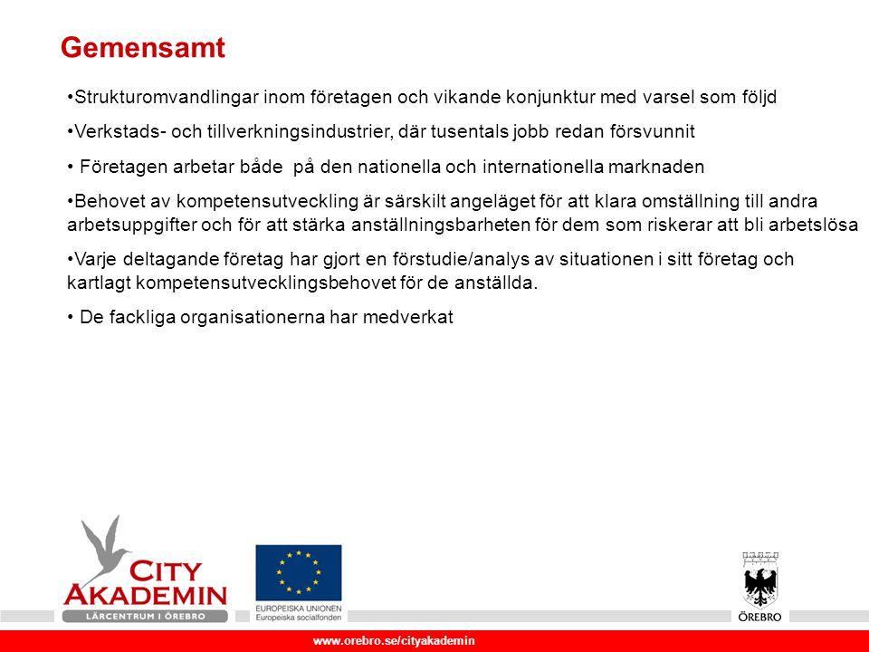 www.orebro.se/cityakademin Örebro län har identifierats av Sveriges regering som viktigt med riktade insatser på grund av näringsstrukturen.