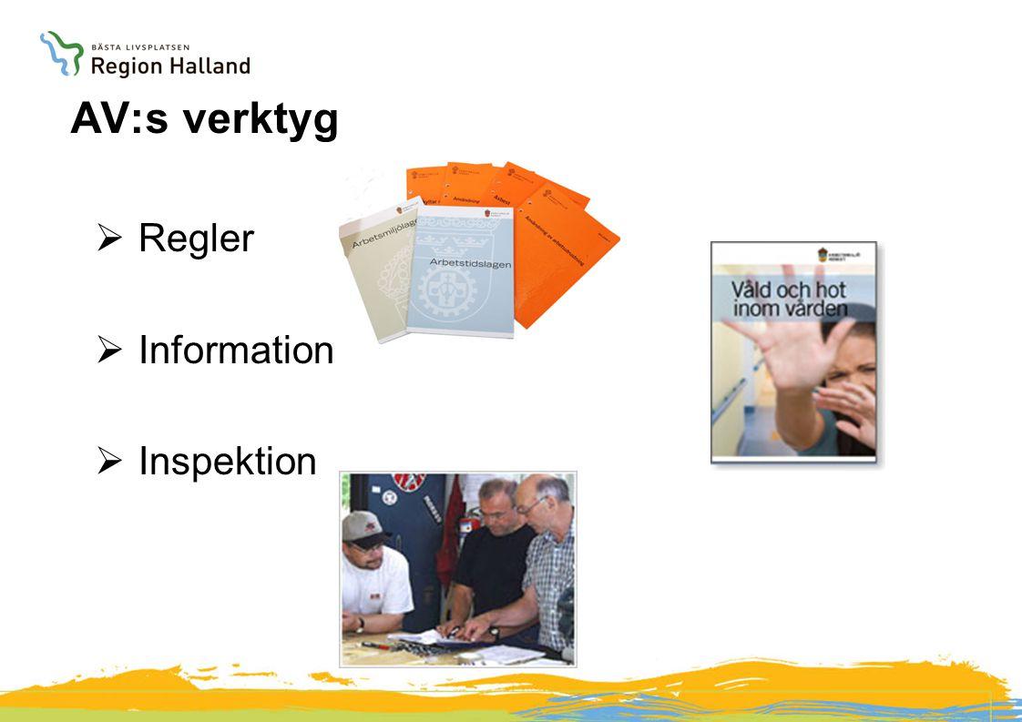 AV:s verktyg  Regler  Information  Inspektion