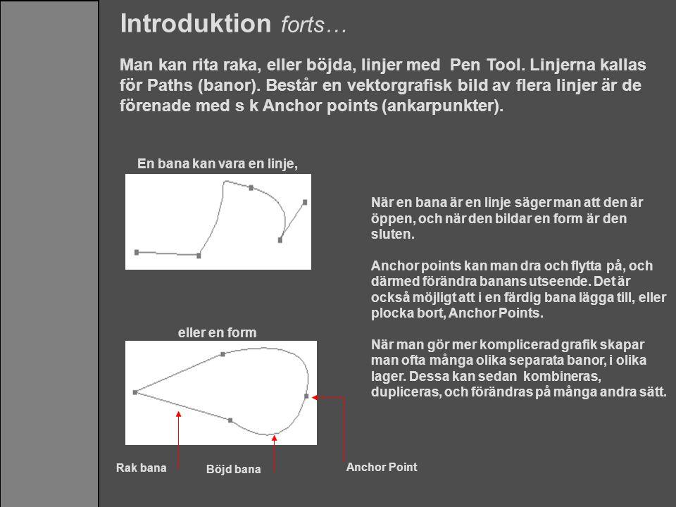 Introduktion forts… Man kan rita raka, eller böjda, linjer med Pen Tool. Linjerna kallas för Paths (banor). Består en vektorgrafisk bild av flera linj
