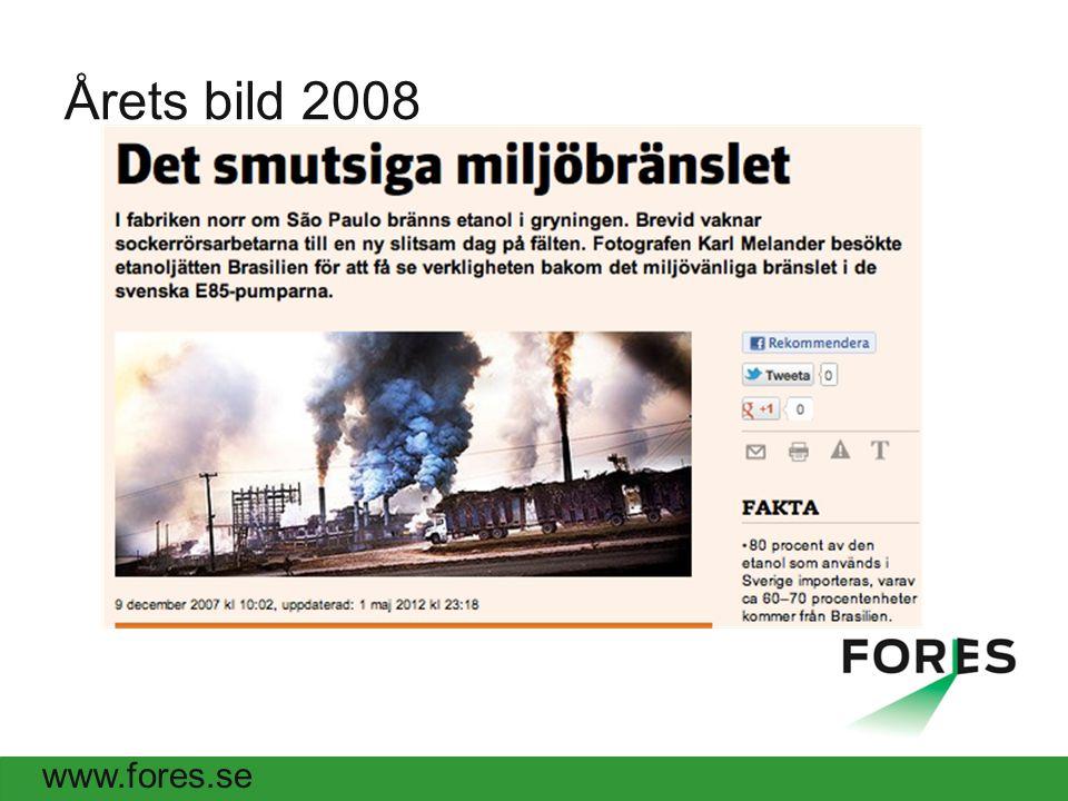 www.fores.se Årets bild 2008