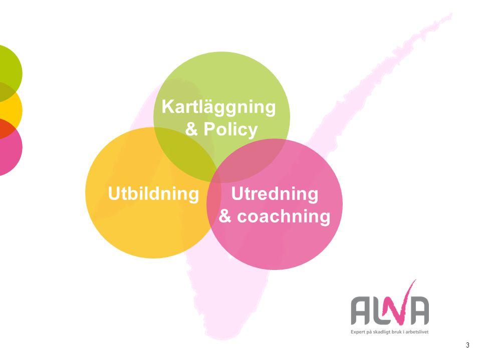 3 Utbildning Kartläggning & Policy Utredning & coachning