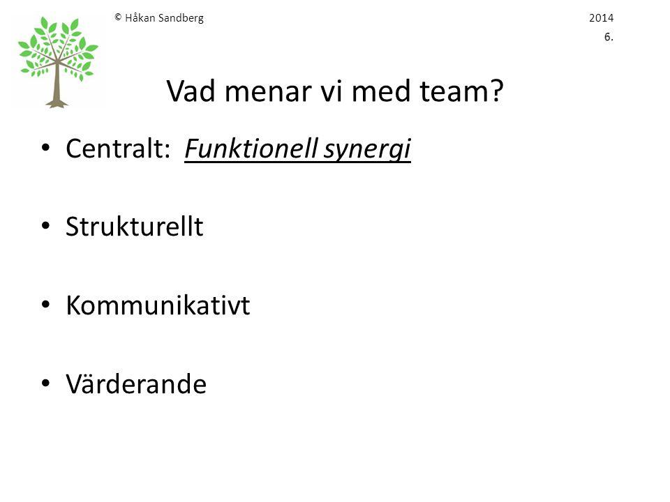 Centralt: Funktionell synergi Strukturellt Kommunikativt Värderande
