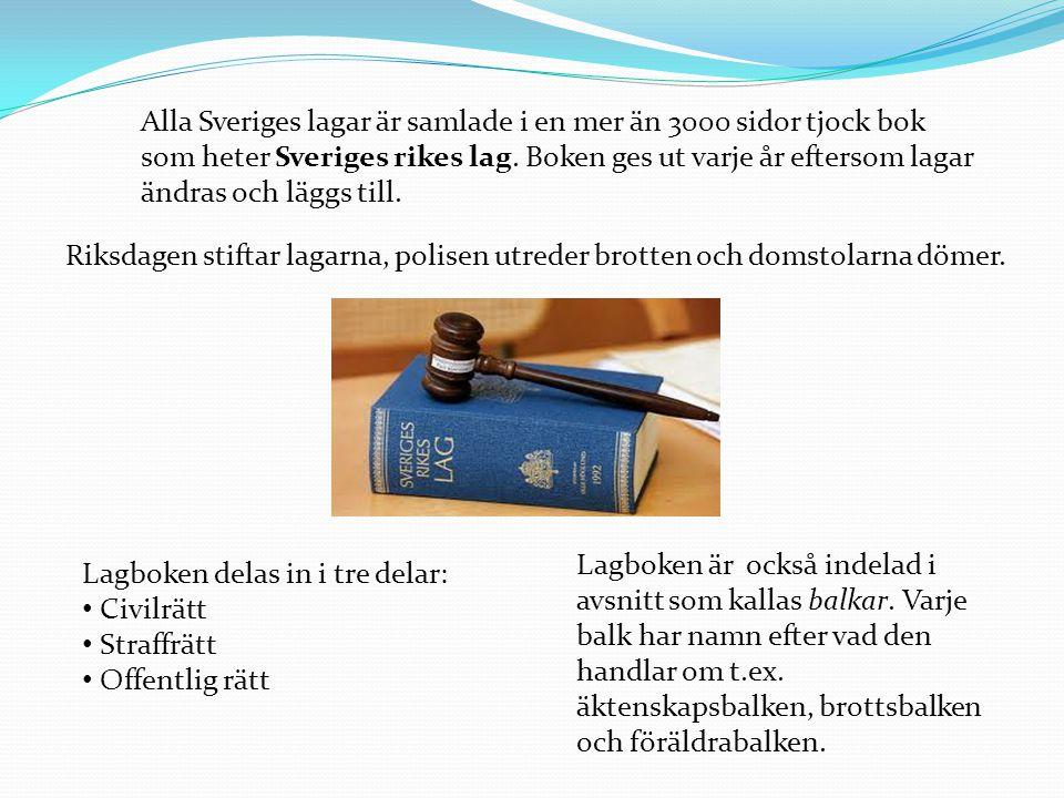 Alla Sveriges lagar är samlade i en mer än 3000 sidor tjock bok som heter Sveriges rikes lag. Boken ges ut varje år eftersom lagar ändras och läggs ti