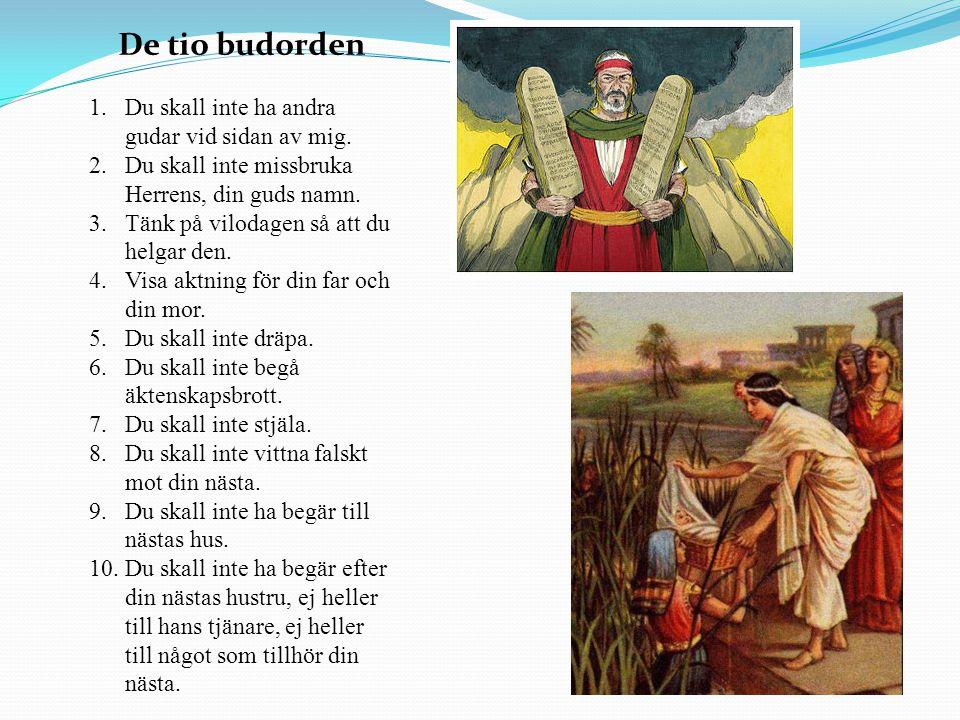 De tio budorden 1.Du skall inte ha andra gudar vid sidan av mig. 2.Du skall inte missbruka Herrens, din guds namn. 3.Tänk på vilodagen så att du helga