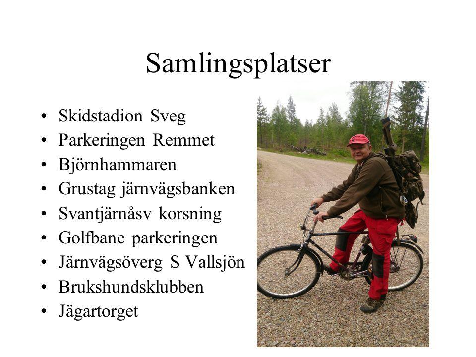 Björnrapportering Städa bort gamla björnskitar efter vägarna före jakten Märk nya skitar och obsar med utdelat snitselband Rapportera till AL via sms dygnet runt.