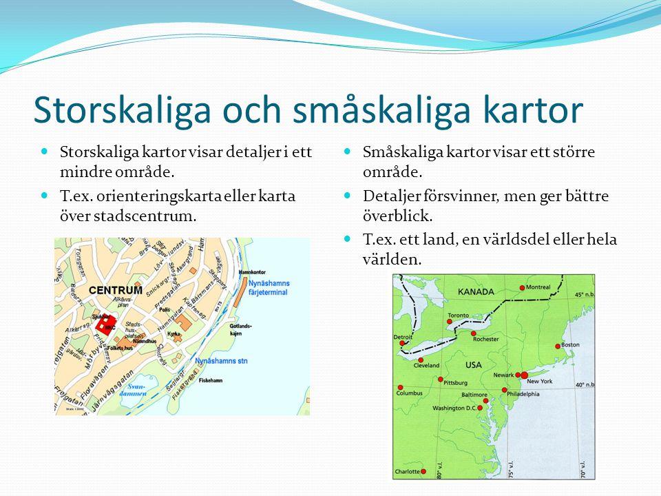 Storskaliga och småskaliga kartor Storskaliga kartor visar detaljer i ett mindre område. T.ex. orienteringskarta eller karta över stadscentrum. Småska