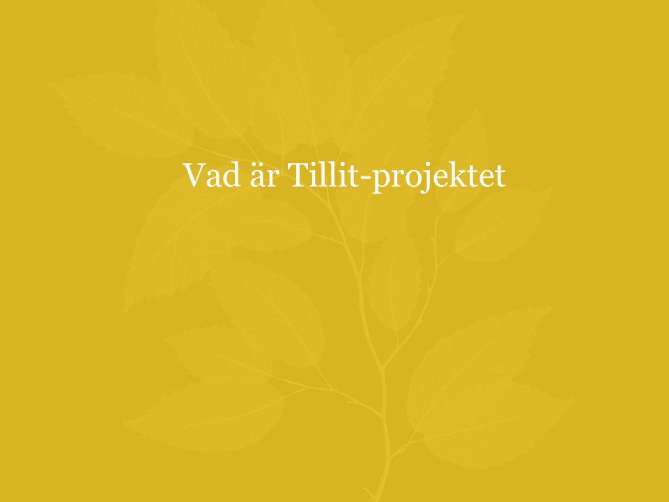 Vad är Tillit-projektet