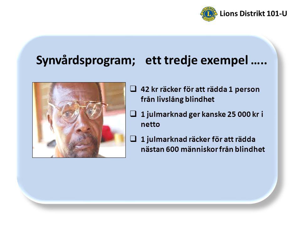 Synvårdsprogram; ett tredje exempel …..