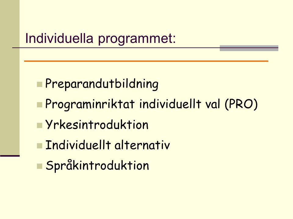 Preparandutbildning Programinriktat individuellt val (PRO) Yrkesintroduktion Individuellt alternativ Språkintroduktion Individuella programmet: