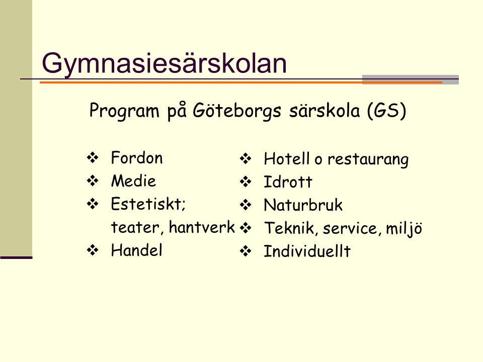 Gymnasiesärskolan  Fordon  Medie  Estetiskt; teater, hantverk  Handel Program på Göteborgs särskola (GS)  Hotell o restaurang  Idrott  Naturbruk  Teknik, service, miljö  Individuellt