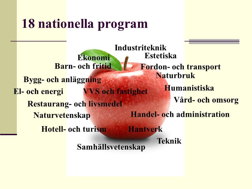 Barn- och fritid Bygg- och anläggning El- och energi Fordon- och transport Handel- och administration HantverkHotell- och turism Industriteknik Naturb