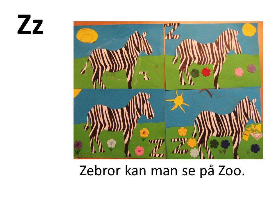 Zz Zebror kan man se på Zoo.