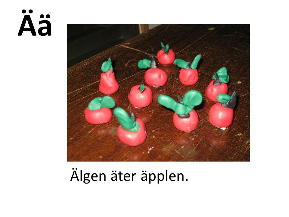 Ää Älgen äter äpplen.